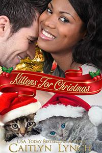 Kittens for Christmas: A Christmas Romance Short Story