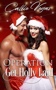 OPERATION: Get Holly Laid: A Holiday Fling Novella