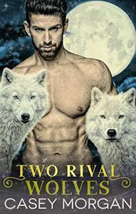 Two Rival Wolves: Paranormal Shifter Fantasy Menage Romance
