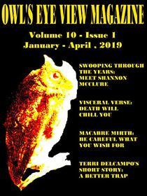 Owl's Eye View Magazine - Volume 10 - Issue 1