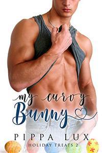 My Curvy Bunny: A BBW Romance