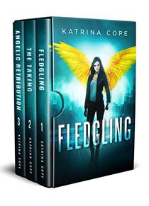 Afterlife Series Box Set: the Angel Trilogy Collection