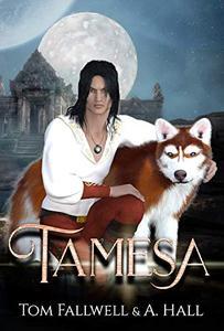 Tamesa: A Divided World: Diverse Epic Fantasy