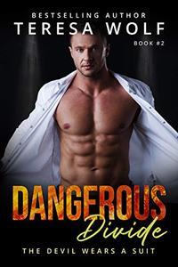 Dangerous Divide: A Billionaire Mystery Romance