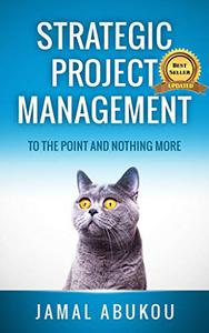 Strategic Project Management: To The Point And Nothing More