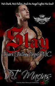 Slay, Dark Fallen Angels MC NorCal Chapter: He's Dark, He's Fallen, And An Angel Lights His Soul!