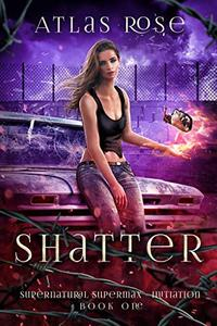 Shatter: Prison Academy Romance