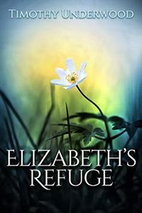 Elizabeth's Refuge: An Elizabeth and Darcy Story
