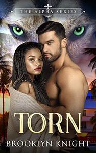 Torn: A BWWM Wolf Shifter Romance