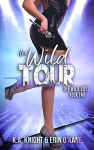 The Wild Tour: The Wild Boys Book 2