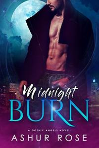 Midnight Burn: a New Adult Paranormal Romance Novel