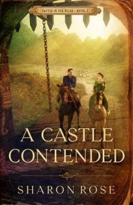 A Castle Contended: Castle in the Wilde - Novel 2