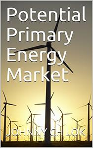 Potential Primary Energy Market