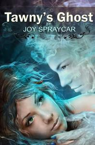 Tawny's Ghost: A Ghostly Romance
