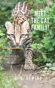Meet the Cat Family! Latin America's Ocelot Lineage