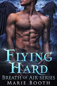 Flying Hard: Breath of Air Collection - A m/m Shifter Romance: Santa Cruz Shifters Book 1