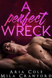 A Perfect Wreck: A Sister's Best Friend Romance