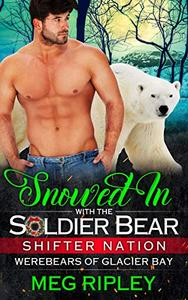 Snowed In With The Soldier Bear