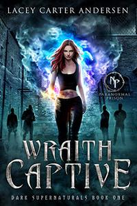 Wraith Captive: A Reverse Harem Romance
