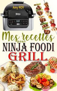 Mes recettes pour Ninja Foodi Grill