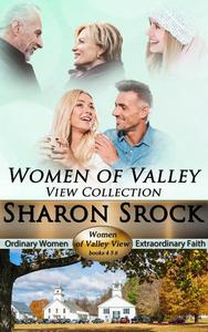 The Women of Valley View Collection, books 4-6