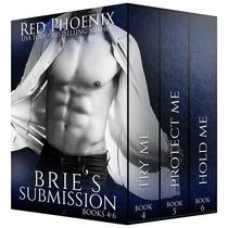 Brie's Submission 4-6