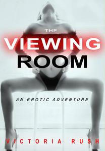 The Viewing Room: An Erotic Adventure