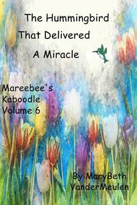 The Hummingbird That Delivered a Miracle