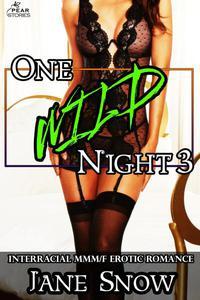 One Wild Night 3