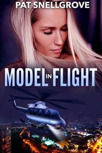 Model in Flight