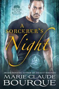 A Sorcerer's Night
