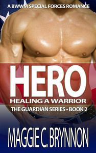 Hero: Healing a Warrior, Book 2