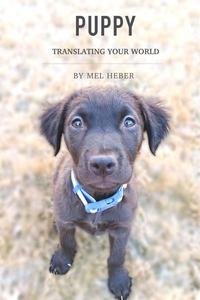 Puppy, Translating Your World