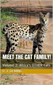 Meet the Cat Family!:  Africa's Other Cats