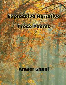 Expressive Narrative Prose Poems