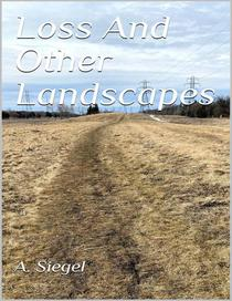 Loss And Other Landscapes