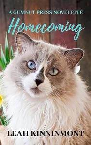 Homecoming Novelette