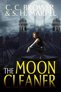 The Moon Cleaner