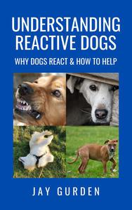 Understanding Reactive Dogs: Why Dogs React & How to Help