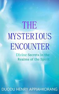 The Mysterious Encounter
