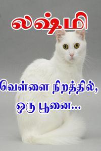 Vellai Niraththil, Oru Poonai...