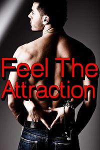 Feel The Attraction: Two Story Bundle of MF Taboo BDSM Stories
