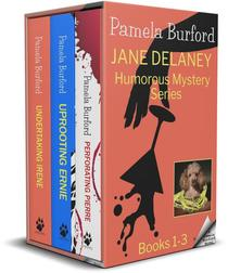 Jane Delaney Humorous Mystery Series: Books 1-3 Box Set