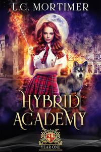 Hybrid Academy: Year One