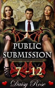Public Submission 7 - 12