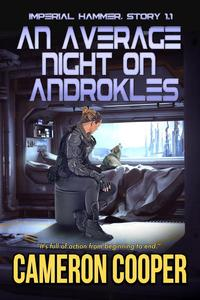 An Average Night on Androkles