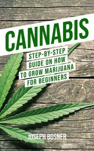 Cannabis: Step-By-Step Guide on How to Grow Marijuana for Beginners