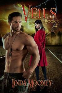 Veils, Book 3