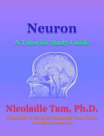 Neuron: A Tutorial Study Guide