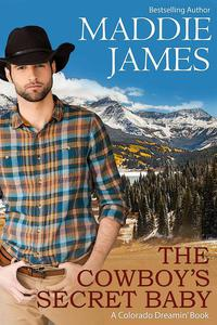 The Cowboy's Secret Baby